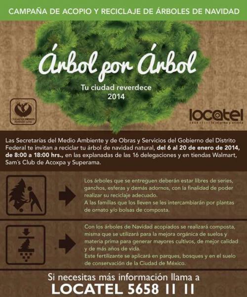 Recicla un árbol de Navidad y recibe gratis plantas de ornato y bolsas de composta (DF)