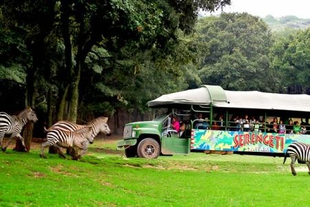 GROUPON: Pasaporte safari con 12 atracciones en Bioparque Estrella $99