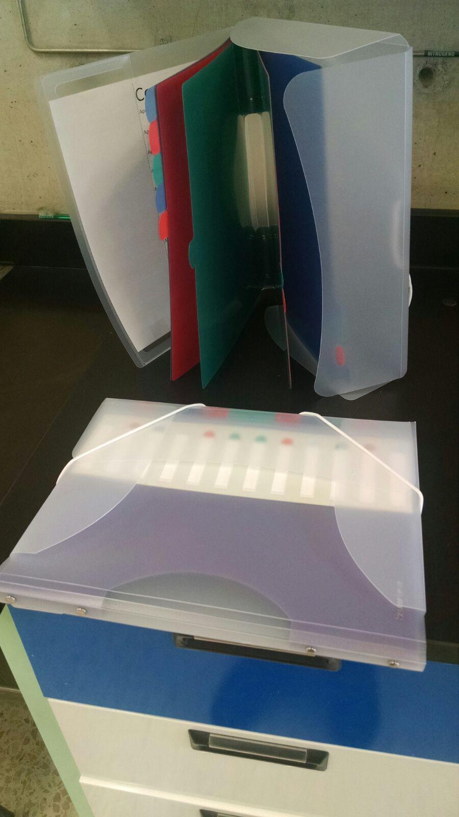Lumen: Folder con doce separadores %50