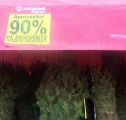 Soriana - Hiper independencia en Torreón: Liquidación de pinos navideños.