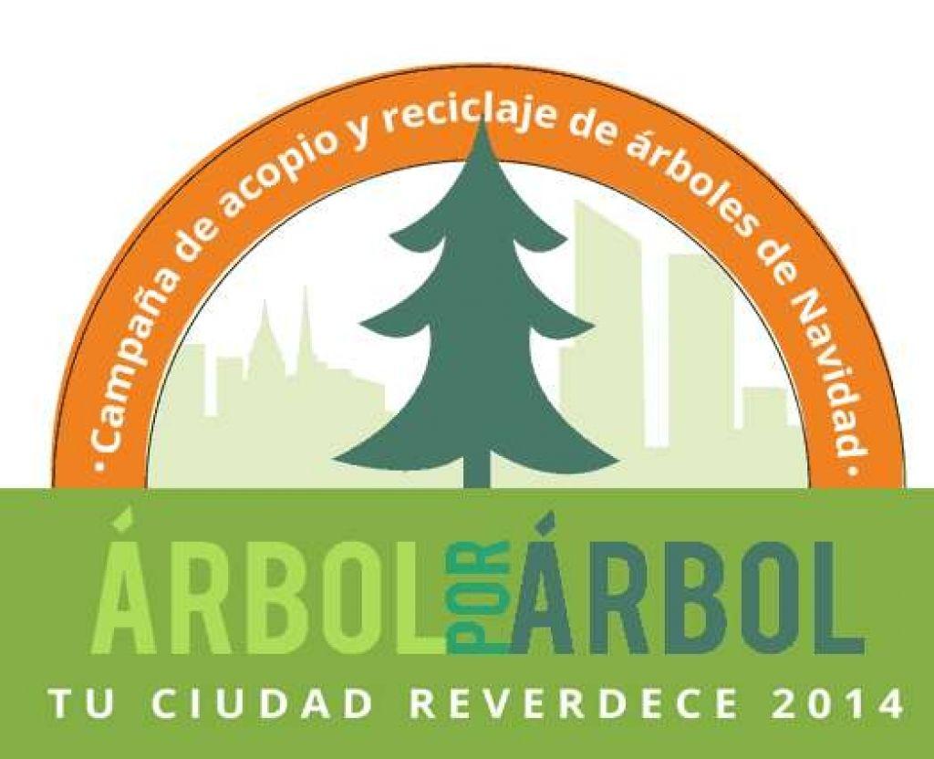 Recicla árbol de Navidad y recibe gratis planta de ornato (DF y GDL)
