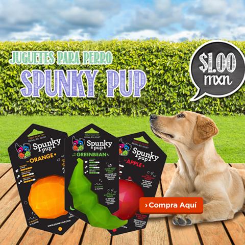 Petn'Go: Juguetes Spunky Pup a $1 + Latas RC 4x2
