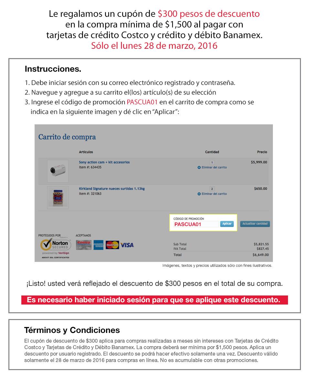 Costco en línea: 12 MSI + $300 de descuento en compras de $1,500 o más