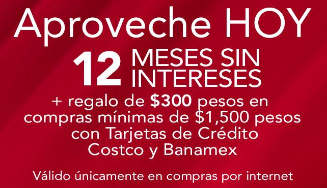 Costco Online: Hoy Todo a 12 MSI + Regalo de $300 en compras desde $1,500 con TDC Costco y Banamex, sólo por internet