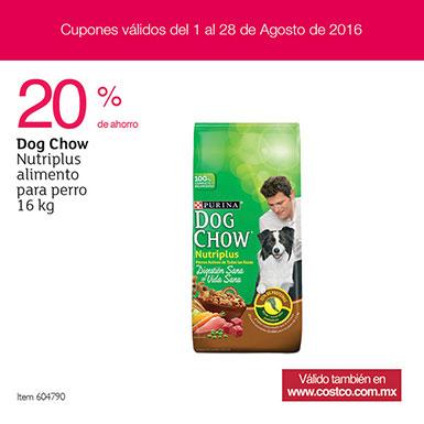 Costco tienda física: Dog Chow 16 kg, adulto
