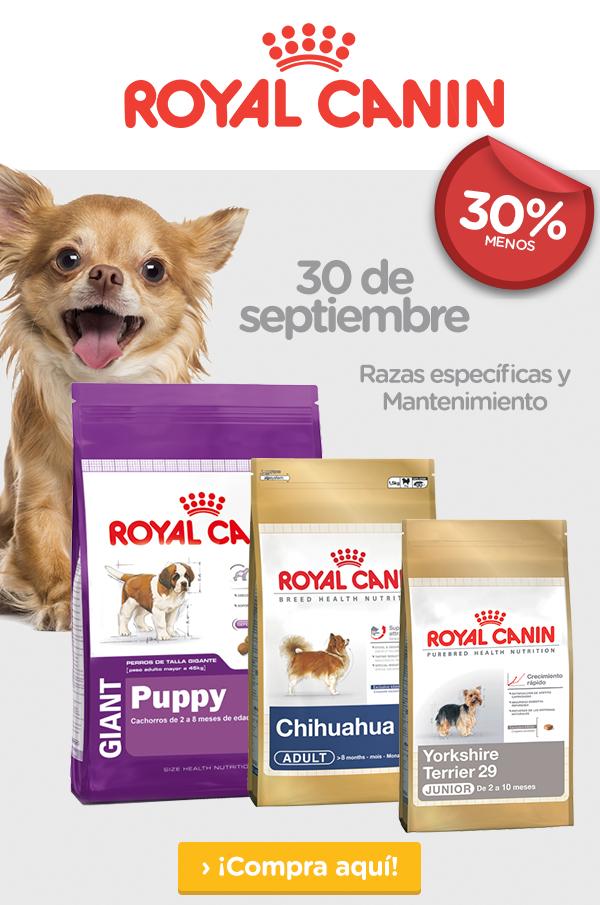 Pet n'GO: 30% de descuento Royal Canin (Razas especializadas y mantenimiento)