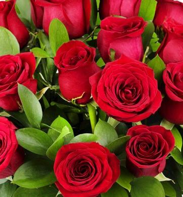 Buen Fin 2016 Envía Flores: 24 Rosas por $599