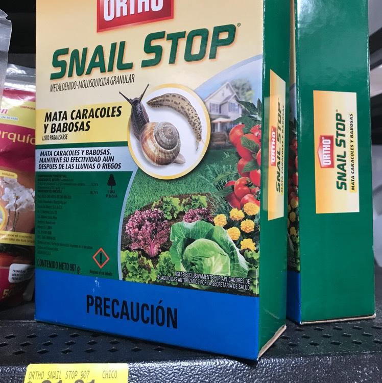 Walmart Leones: ultima liquidación mata caracoles
