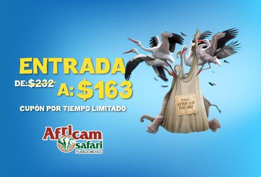 CuponeraApp: Africam Safari. Entrada de $232 a $163