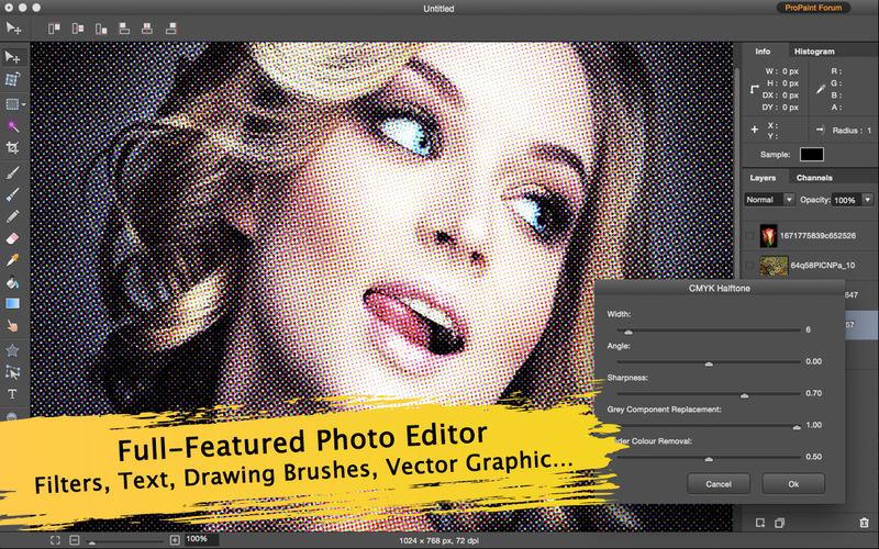 Mac App Store: Pro Paint - Filter, Image and Photo Editor, Editor de Imágenes precio original $569