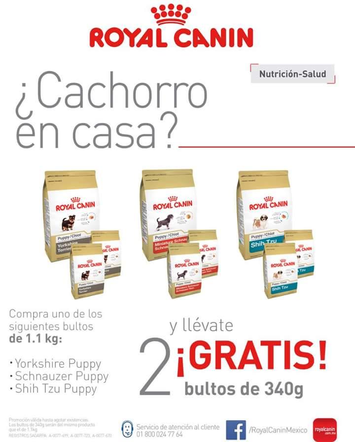 Alimento Royal Canin 2 costalitos 340gr gratis comprando bolsa de 1.1Kg