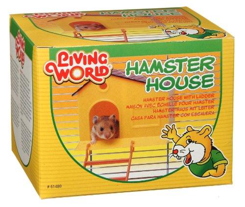 Amazon:Hagen Casa para Hamster Con Escalera