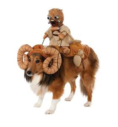 Amazon: Compilación de disfraces para perro, todos en menos de 200
