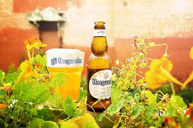 BeerHouse: packs de cerveza con el que te regalan dos cervezas Hoegaarden