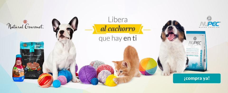 Petsy: 25% de descuento + envío gratis (tienda para mascotas)