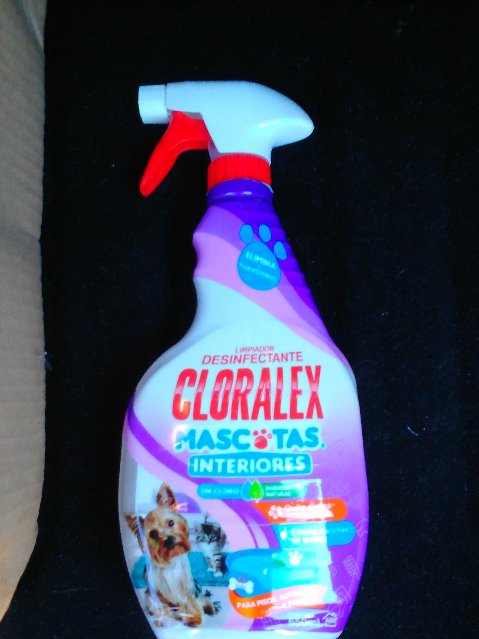 HEB Saltillo La Nogalera - Cloralex Mascotas Atomizador Interiores