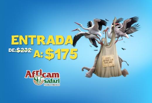 CuponeraApp: Cupón de descuento Entrada a sólo $175 en Africam Safari Puebla