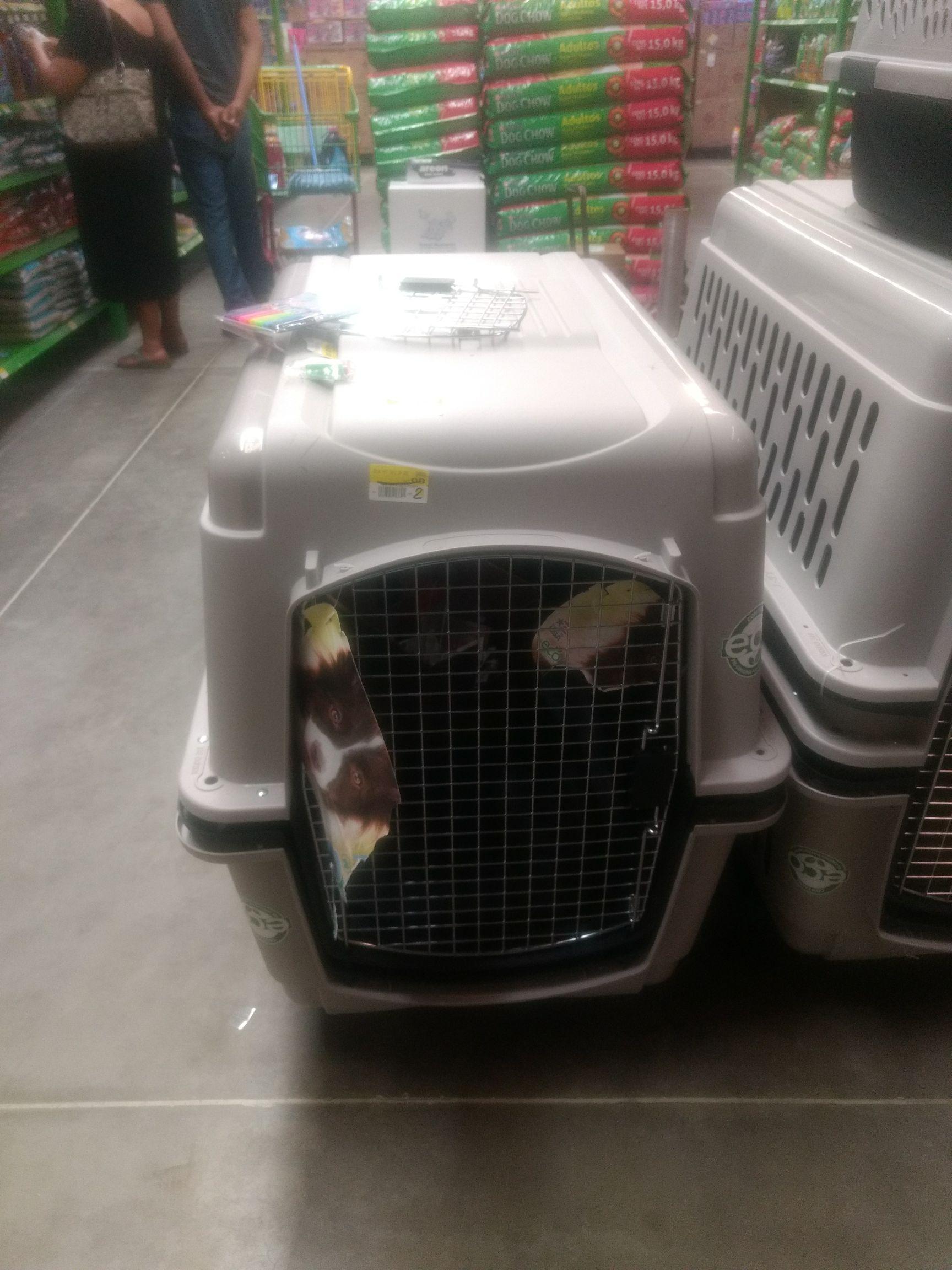 Bodega Aurrerá Tuxtepec: jaula para perro grande