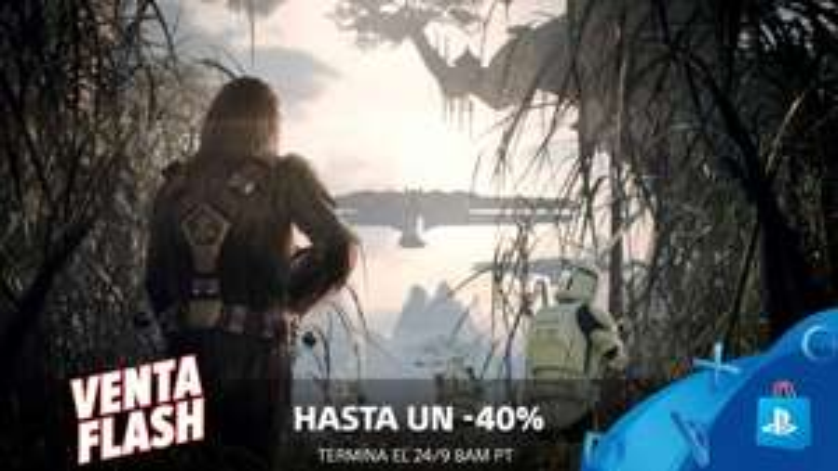PSN Store Venta flash