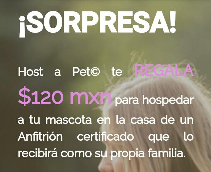Host A Pet: Regala $120 para tu mascota