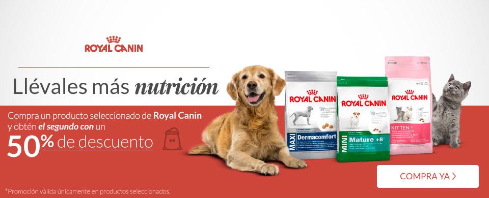 Petsy: Alimento Royal Canin en oferta especial