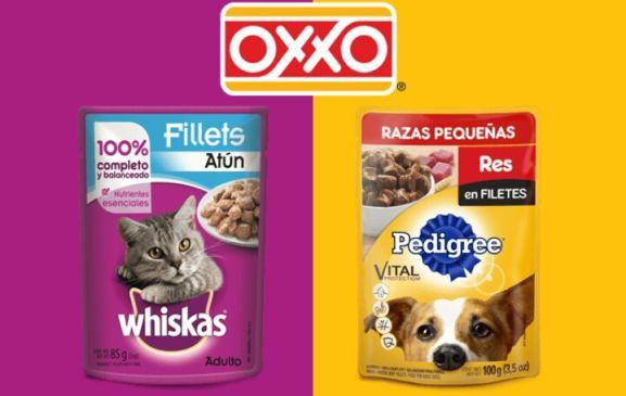 Oxxo: Regala cupón para sobres de gatos y perros.