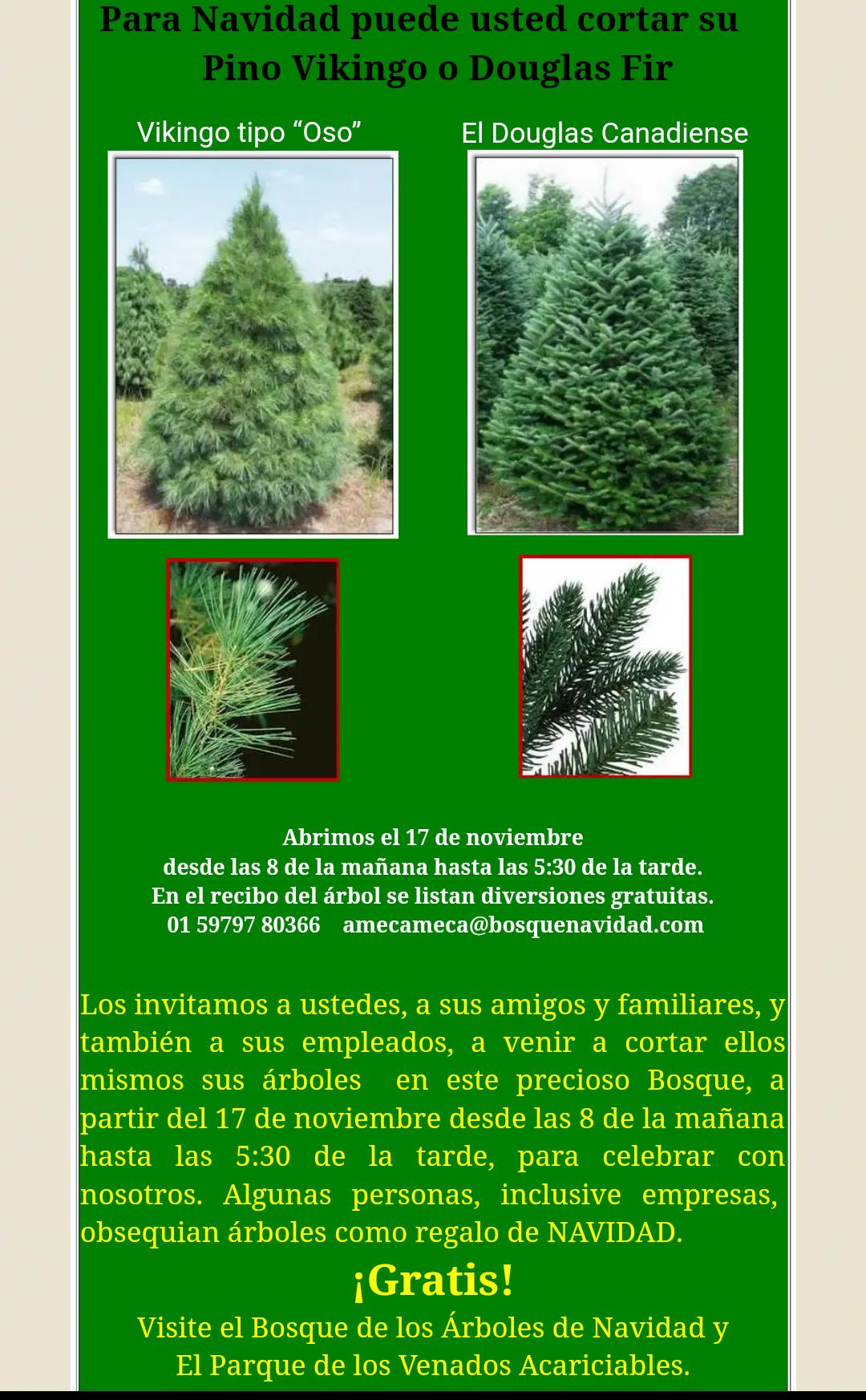 Bosque de los árboles de navidad: Entrada gratis para 6 personas al Parque de los venados acariciables en la compra de tu árbol de navidad.