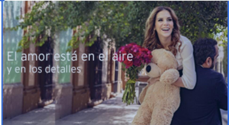 Enviaflores.com hasta 20% Descuentos con Banamex