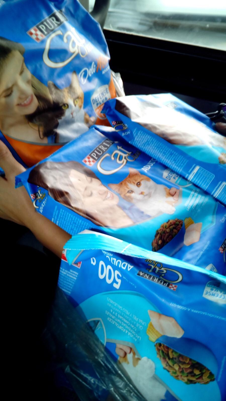 Walmart Villa Coapa: 4kg de Cat Chow x $69 pesos