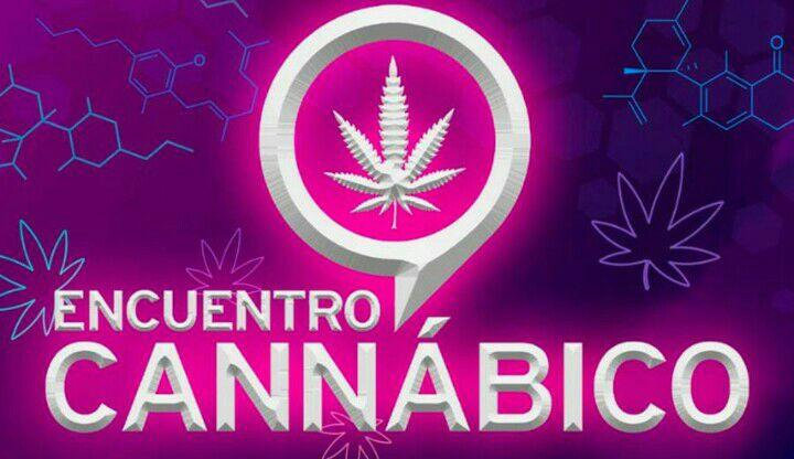 Groupon: festival de cannabis