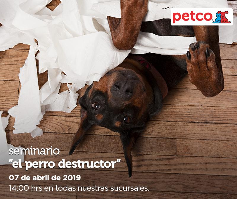 Petco: Seminario Gratuito El Perro Destructor