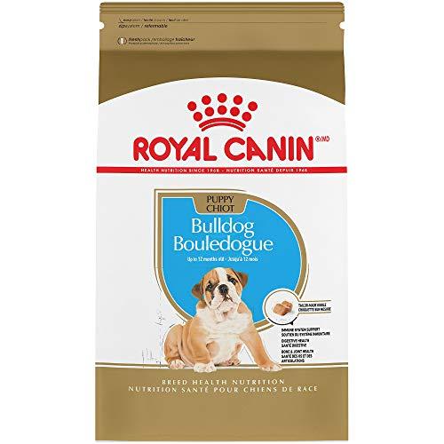 Amazon: Alimento royal canin para bulldog pequeñín a mitad de precio