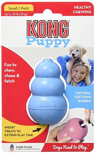 KONG cachorro en amazon