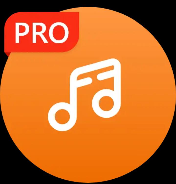 Google Play: Reproductor de Música (Versión Pro)