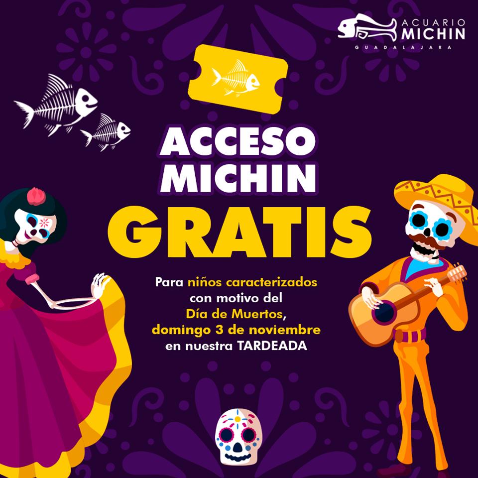 Acceso Acuario Michín GRATIS