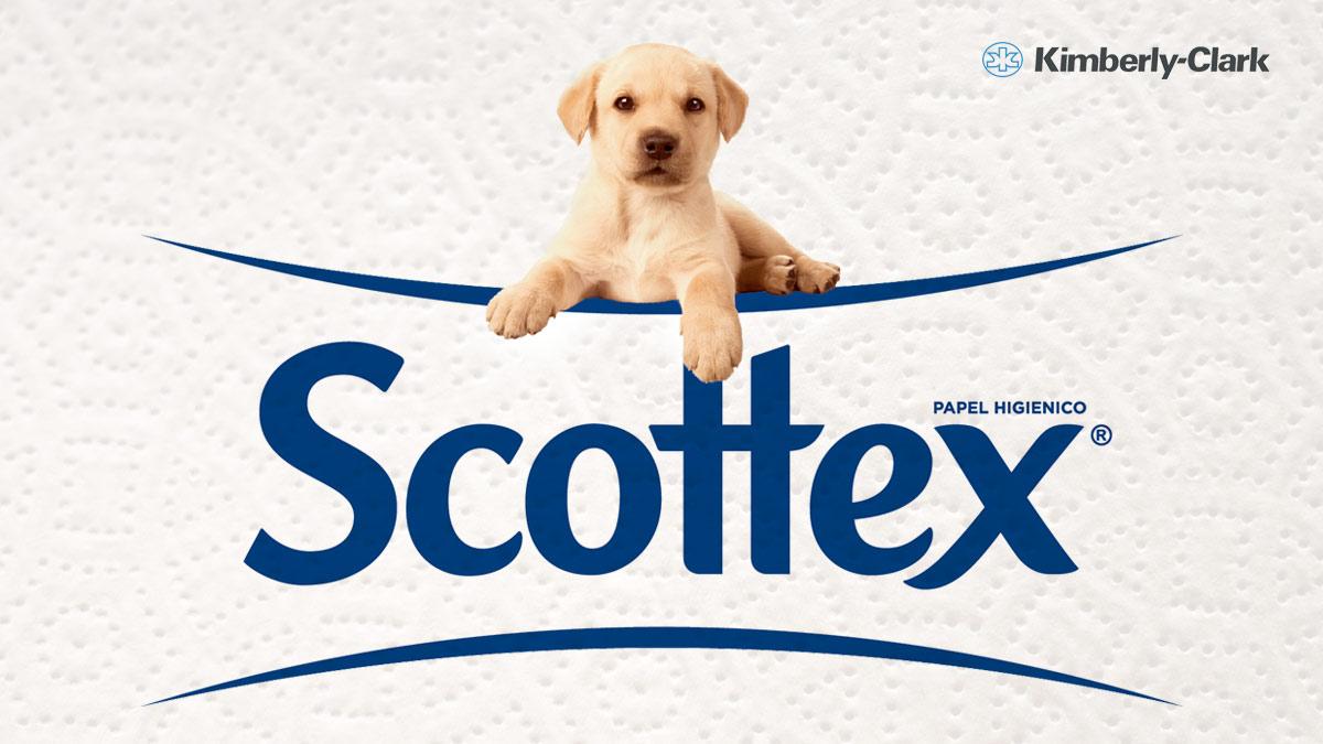 La comer y fresko en línea: 2x1 en papel higiénico, Servitoallas y toallas húmedas marca scottex.