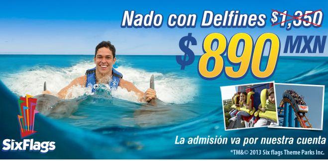 Entrada a Six Flags y nado con delfines $890 (regular $1,429)