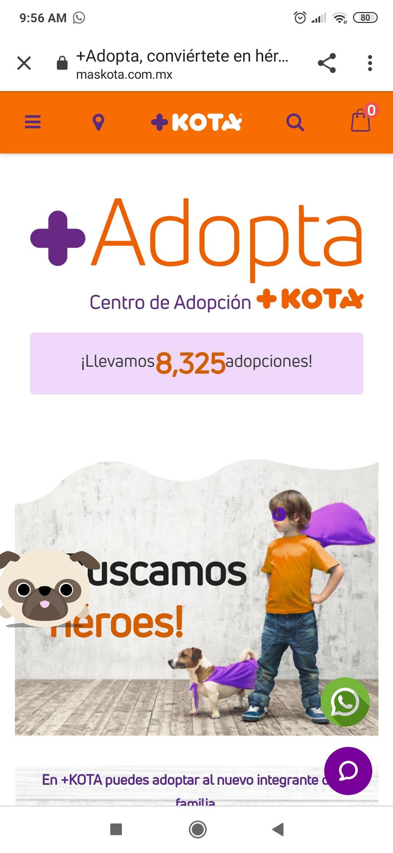 Adopciones +kota