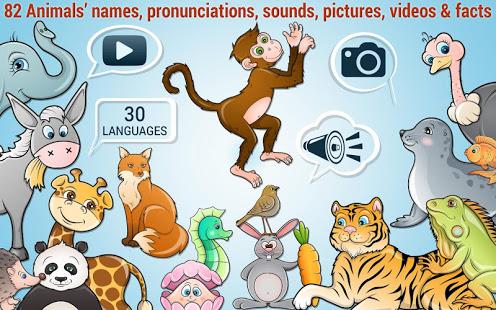 Google Play : Puzzle de Niños - 82 animales Gratis y sin Anuncios (niños de todas las edades, niños con autismo)