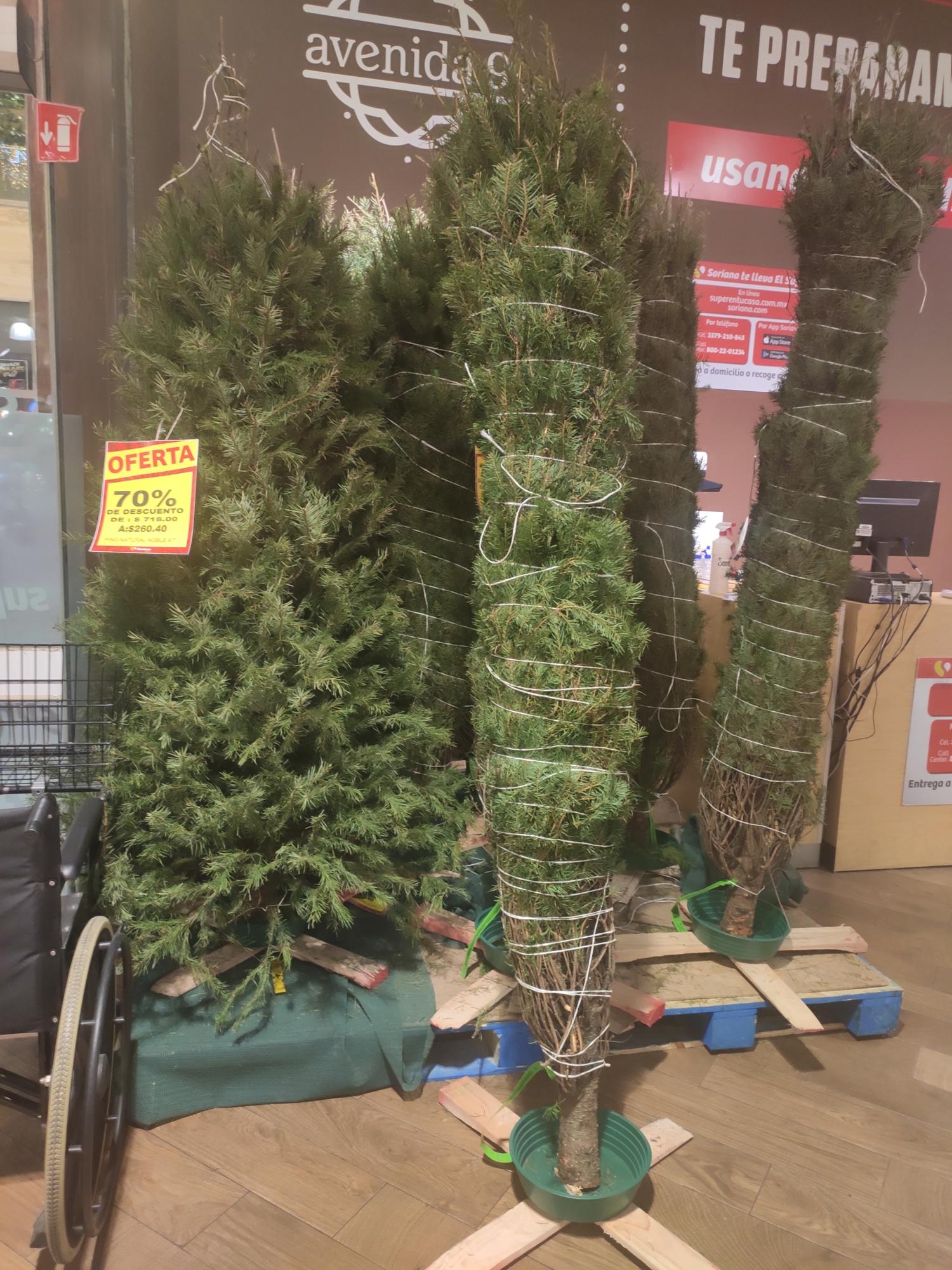 Árbol de navidad 2.60 metros a $260 - Soriana Miyana Polanco