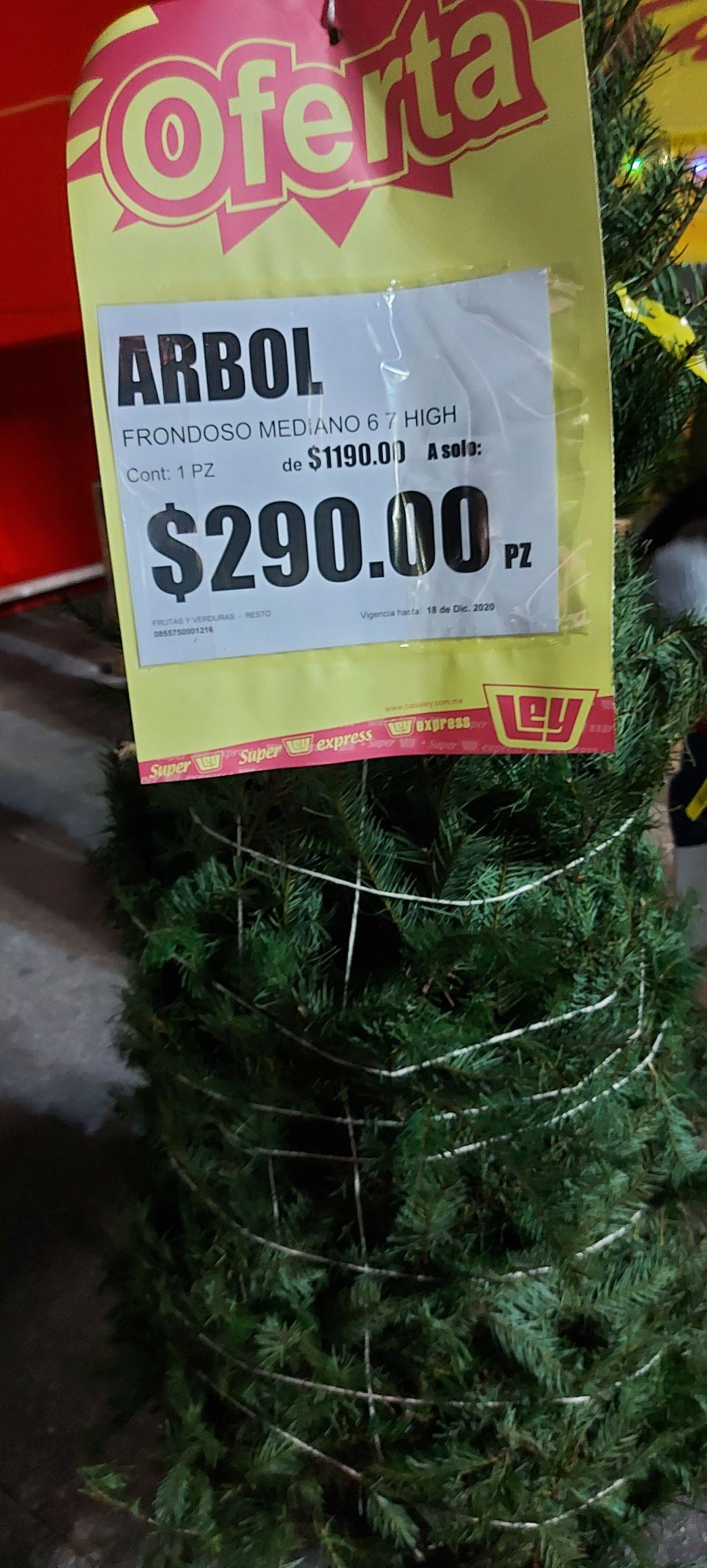 Casa Ley Nayarit: Árboles de navidad