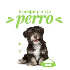 Petsy: 30% de descuento en todo para tu mascota (usuarios nuevos)