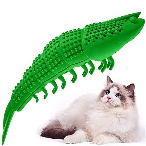 Amazon, AUTOWT Gato Masticar juguetes, Cepillo de dientes de gato interactivo con campana y hierba gatera