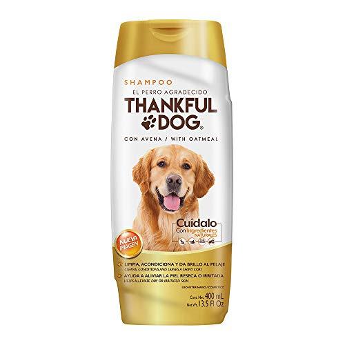 Amazon: Shampoo Grisi el perro agradecido con Avena 400 ml