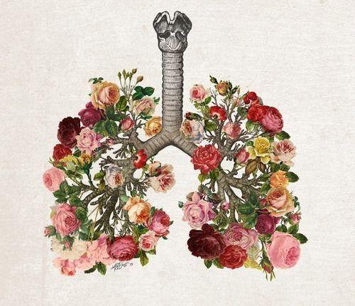 Taller auxiliar en la rehabilitación pulmonar post COVID -19