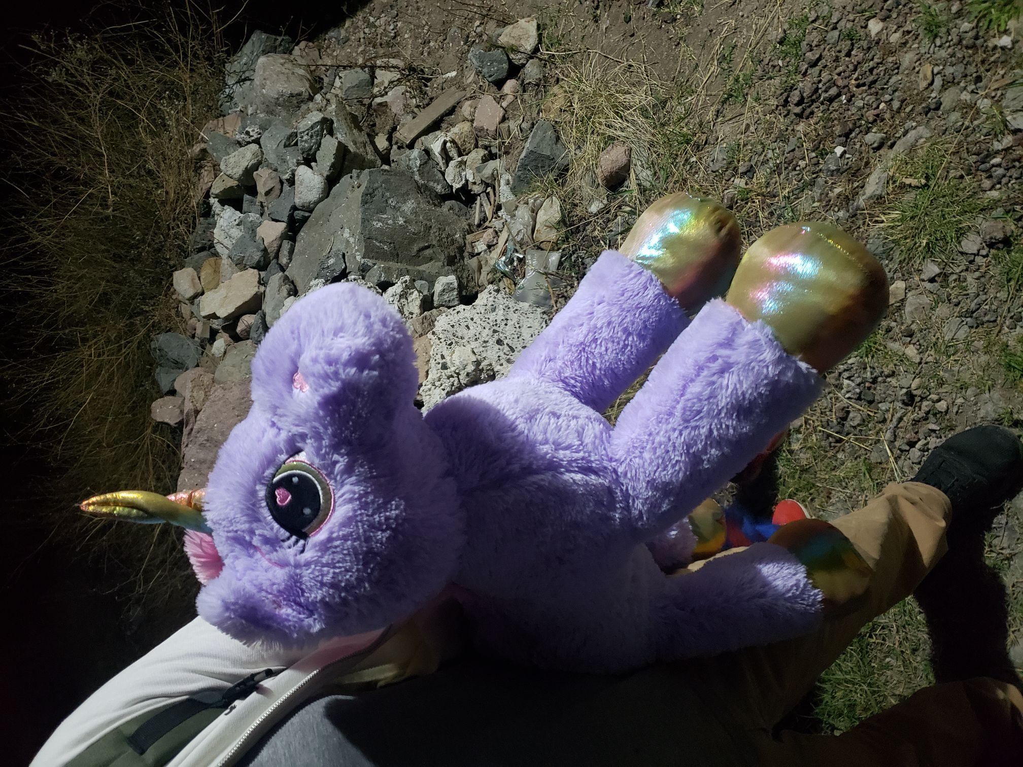 Bodega aurrera: unicornio