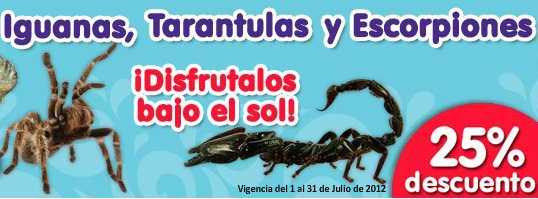 + Kota: 25% de descuento en iguanas, tarántulas, productos Bayer y más