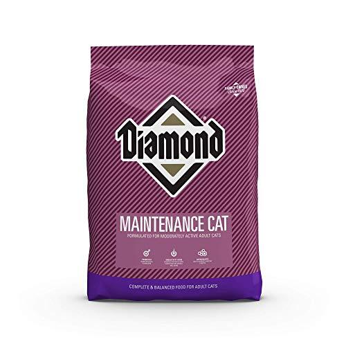 Amazon: MAINTENANCE CAT 9.07 KILOS