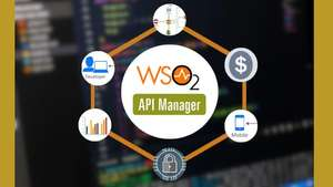 Udemy Español: Curso de Microsoft Power BI Desktop/API Management con WSO2, REST Open API first swagger SOAP