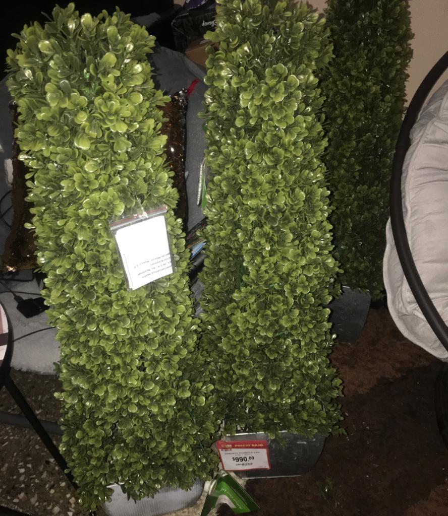 Walmart: Arbusto con luz de 990.00 a 48.02